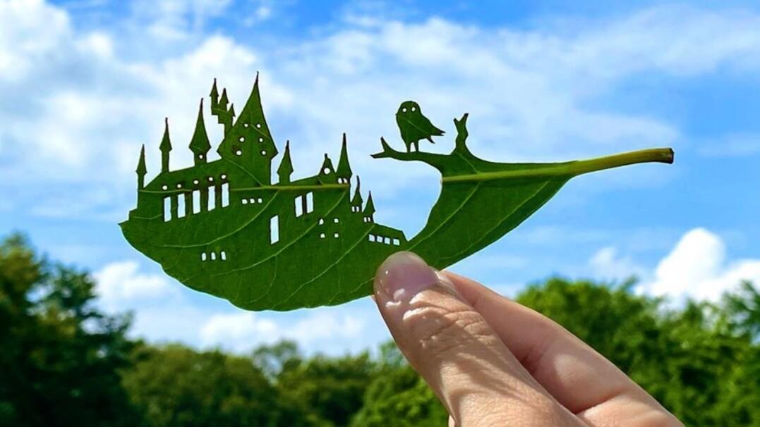 Naturalne dzieła sztuki. Zamiast liścia - Hogwart czy safari
