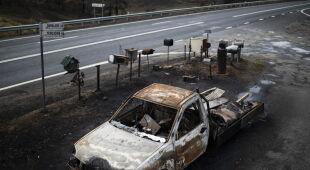 Ogień trawi Australię